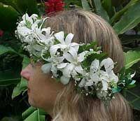 Leis fern, hawaiian lei, favorit flower, haku lei