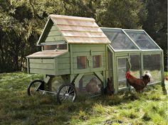 farm, idea, chicken tractors, williams sonoma, chicken coops, chickencoop, hous, backyard, garden