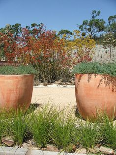 For more beautiful planters, please also check: www.jacksonpottery.com