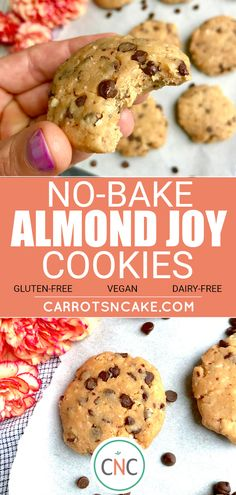 No-Bake Almond Joy Cookies - vegan, gluten-free, dairy-free, delicious!
