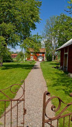 Summer in Småland, Sweden