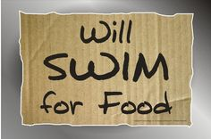 Will Swim for Food sticker