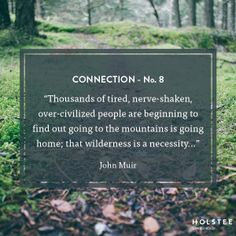 Find connection through nature.