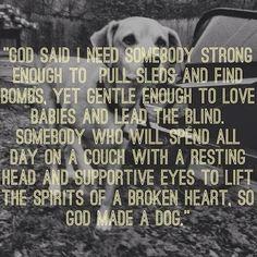 So God made a Dog... how sweet!