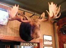 Sleder's Family Tavern--where you have to smooch the moose