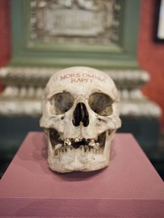 articulomortis:    Morbid Curiosity: The Richard Harris Collection