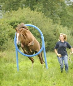 Top 10 ways to have fun with your horse