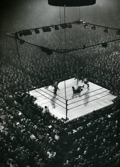 the Boxing ring