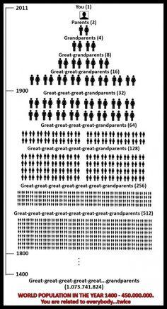 Genealogy & Math histori, interest, famili tree, chart, genealog