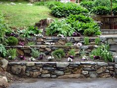 We built this tiered retaining wall to add depth and plants..great option instead of building 1 wall 4' high