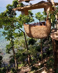 Treehouse dining in Koh Kood, Thailand