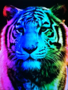 Colorful Tiger | ♡Cute Backgrounds♡ | Pinterest