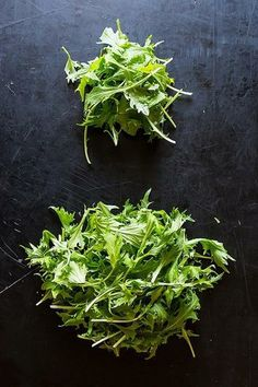 Find out the RIGHT way to store your greens!