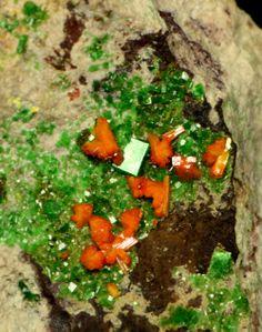 Kasolite and Torbernite - Musonoi Mine, Kolwezi, Katanga, Zaïre