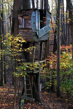 my dad built us a tree house almost like this  <3