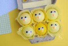 baby egg chicks