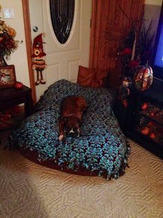 DIY dog bed that I made for all the animals!! My mom had made a fleece throw a couple of years ago. I untied one end and took the stuffing out of some old dog beds and made one large dog bed...Maggie is loving it!!!
