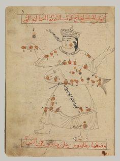 Kitab suwar al-kawakib al-thabita (Book of the Images of the Fixed Stars) of al-Sufi, Timurid period (1370–1507)