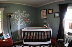 tree, crib, baby room color ideas, boy rooms, babi room, boy nurseries, owl nursery, little boys, babies rooms