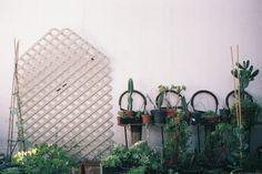 Sharlene Garcia — Visual Artist, Home, La Libertad, Tijuana