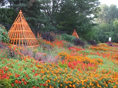 Orange Theme succeeds at Rotary Botanical Gardens