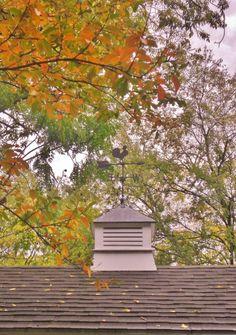 Autumn cupola