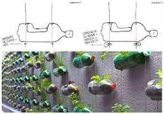 plantas em garrafas pet - Pesquisa Google
