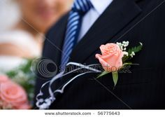 Buttonhole, with cream rose and a little gypsophilia