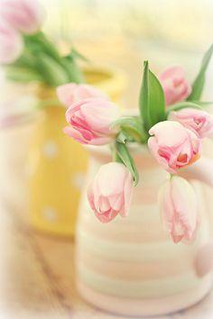 Lovely spring tulip arrangements...