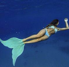 Mermaid Fins