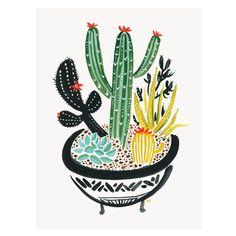 Cactus 12″ x 16″
