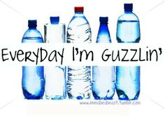 Drink yourself a beach body! The science is there, now it's up to you to get guzzlin'
