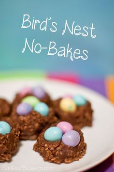 Chocolate Peanut Butter No-Bakes with Peanut M