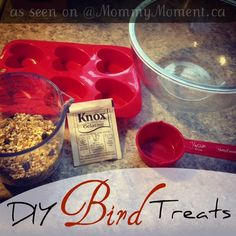 DIY Bird Treats via @Jody Rieck Rieck Rieck Arsenault {Mommy Moment}