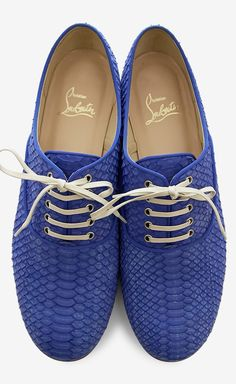 Christian Louboutin Royal Blue And Brown Loafer