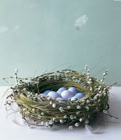 FLOOR: Vrolijk Pasen !