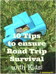 Road Trip Survival With Kids | Mommy Niri