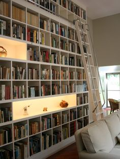 A library complete with a ladder.