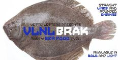 VLNL Brak artwork by