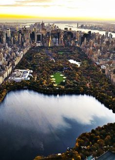 Central Park, NYC. I can't wait to stroll there with my hubby this weekend! :)