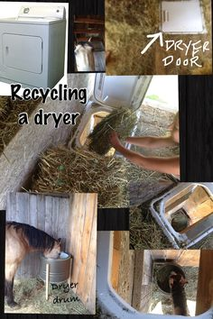 My husband found an old dryer on the side of the road and decided to re-purpose it.  The dryer door and frame he used as a hay hatch in our small barn hay mow. Below the hay hole is the drum from the dryer which he mounted on a wooden frame. No holes in the floor for kids to fall through, no place on the feeder for the horse to catch herself or wear her mane off. The dryer drum of course has all of the natural holes in it to vent and let dust, chaf, and water go through. Genius!