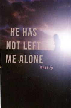 John 8:29