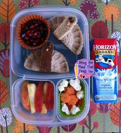 leftover turkey, kid lunchessnack, hands, pockets, leftov turkey, dumplings, turkey leftovers, lunchbox, lunch box