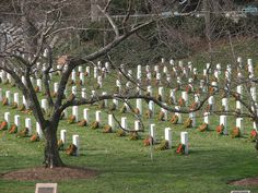 It takes hundreds of volunteers and one Saturday to place a wreath on every grave at Arlington National Cemetery.  Thanks to all those volunteers