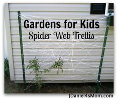 Homemade Spider Web Trellis- What a fun way to watch a plant spread and grow! We love making ours. #gardening #kids #spiderweb