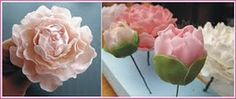 how to make peonies