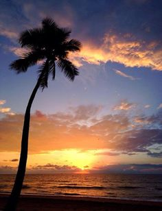 My world awakens, Courtesy of My Beach