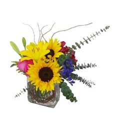 Calypso by @Cactus Flower, $59.99