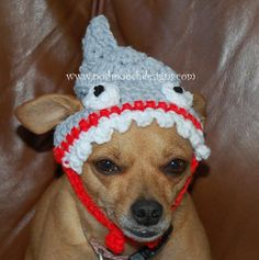 small dogs, pet, dog beani, beani pattern, dog hat, shark week, crochet pattern, shark dog
