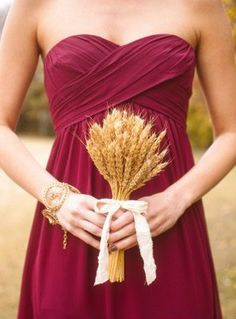 Wheat for fall.